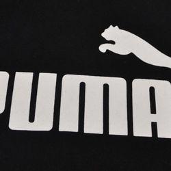 buzo-puma-no-1-hoody-2593424-01